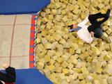 Opposition leader Tony Abbott jumps into the foam pit during an Australian Olympic Gymnastics Team Announcement at AIS on June 21, 2012 in Canberra, Australia.
