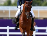 Clayton Fredericks of Australia riding Bendigo competes in the Individual Dressage Equestrian event on Day 2 of the London 2012 Olympic Games at Greenwich Park on July 29, 2012 in London, England.
