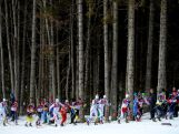 Skiers compete in the Men's Skiathlon 15 km Classic + 15 km Free during day two of the Sochi 2014 Winter Olympics at Laura Cross-country Ski & Biathlon Centre.