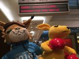 Aussie team mascot, BK and Lillehammer 2016 mascot, Sjogg stop over at Dubai airport on their way to the Lillehammer Youth Winter Olympics Games
