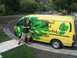 Running my own business- Tropical Plant Rentals!
