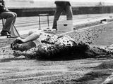 Tokyo 1964: George Stoykovski of Bulgaria comes to the end of his triple jump chance when he fell badly during a crucial jump.