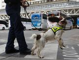 Metropolitan specialist dog 'Spike' walks across the coach station in between sniffing luggage in the run up to the London 2012 Olympic Games at Victoria Coach Station on July 12, 2012 in London, England. Security is being stepped up across the capital ahead of the London 2012 Olympics.